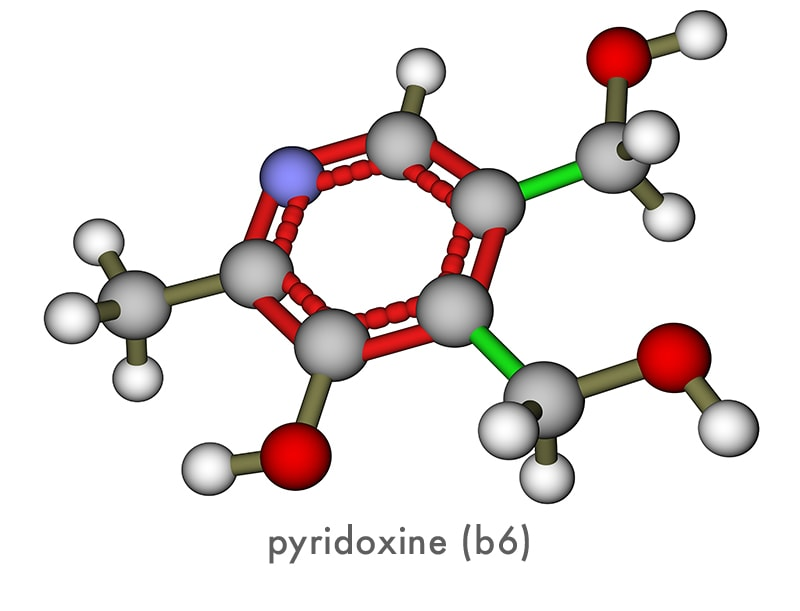pyridoxine molecule