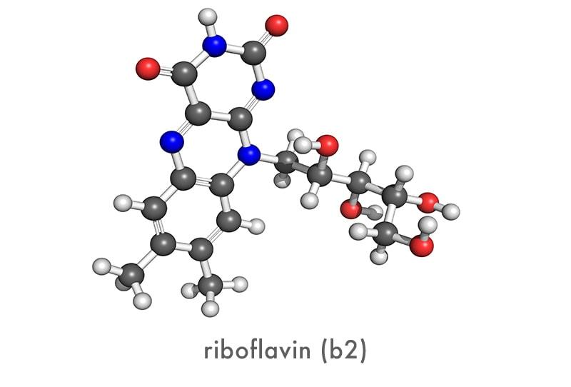 riboflavin molecule