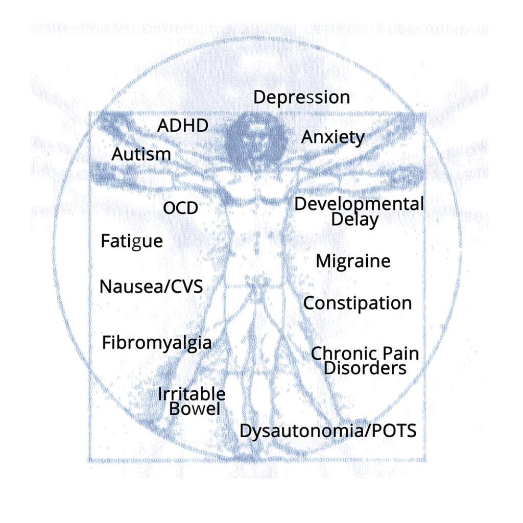 vetruvian-man-neuroneeds